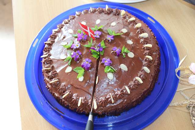 landsbydag-kage-kon-og-fest-12-9-15-033
